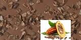 Kakaobohnen-Splitter