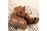 chocri / Barú Pralinen aus dunkler belgischer Schokolade mit Haselnuss-Trüffel-Füllung angeschnitte Nahaufnahme, Detailansicht