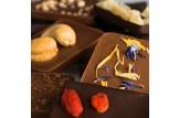 chocri Vegane und Zartbitterschokoladentafeln kleine Weltreise 'Vegan' mit Zutaten wie Goji-Beeren Nahaufnahme, Detailansicht