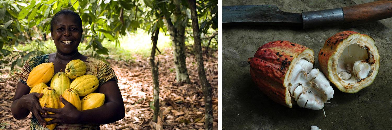 Dame mit Kakaobohnen im Westafrika