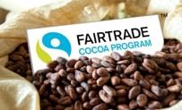 Fairtrade-Kakao Logo inmitten von Kakaobohnen