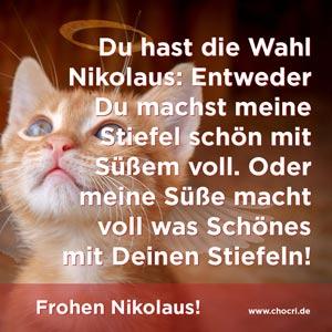 Nikolausgrüße: Du hast die Wahl Nikolaus: Entweder Du machst meine Stiefel schön mit Süßem voll. Oder meine Süße macht voll was Schönes mit Deinen Stiefeln! Frohen Nikolaus!